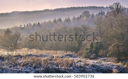 Frosty winter natural landscape in the countryside