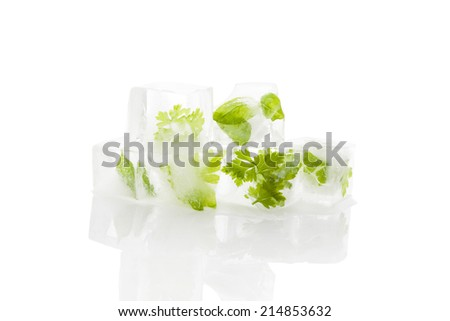 Frozen aromatic herbs in ice cubes isolated on white background with reflection. Culinary fresh cooking.  - stock photo