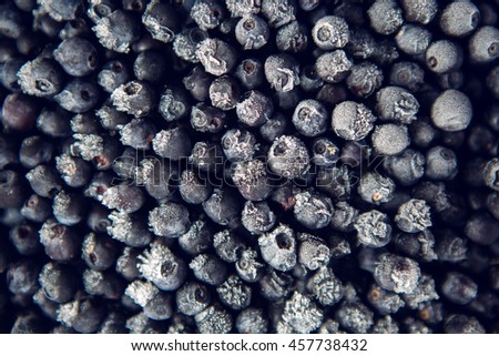 frozen blueberries with frost in the macro - stock photo