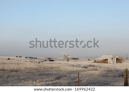 Frozen field and beautiful blue sky in early morning - stock photo