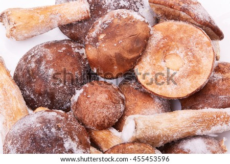 Frozen forest mushrooms on a white background