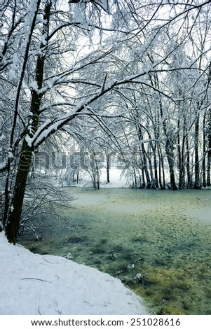 Frozen pond in the Northern Italian winter - stock photo