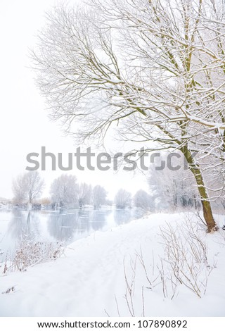 frozen river and trees in winter season - stock photo