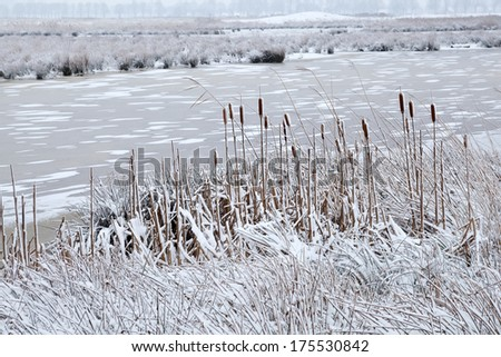 frozen river in cold clouded winter day - stock photo