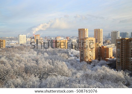 Frozen trees in park in residential area in Moscow at sunny winter day