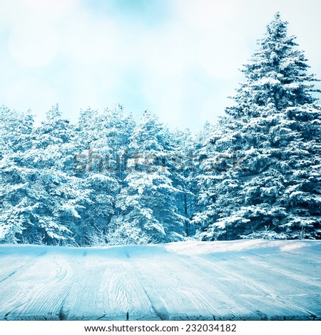 Frozen wooden blank area in winter forest with big fir tree - stock photo