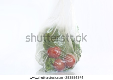 fruit and vegetables grocery bags - stock photo
