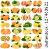 Fruit of citrus - stock photo