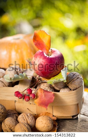 Fruits and vegetables in autumn outdoors. Thanksgiving holiday concept - stock photo