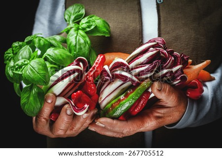 fruits and vegetables in hands - stock photo