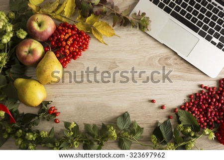 Fruits, berries and laptop on the autumn background - stock photo