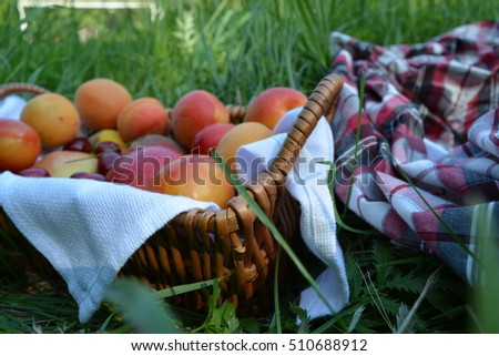 fruits in a basket
