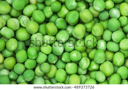 Fruits ripe fresh organic green pea close-up. Food concept and agriculture background.