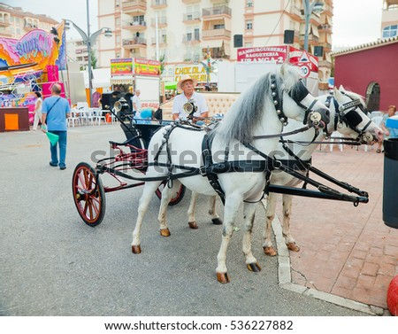 Fuengirola, Spain - October 10, 2014: Two-horse vintage coach with unidentified man as coachman at annual fair in Fuengirola.