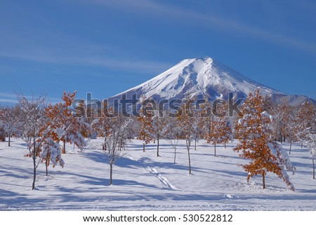 Fuji in autumn and snow