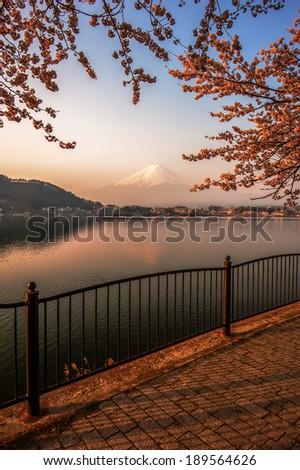 Fujisan , Mount Fuji view from Kawaguchiko lake, Japan with cherry blossom - stock photo