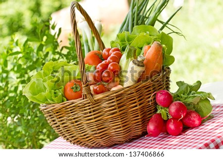 Full basket of fresh vegetables