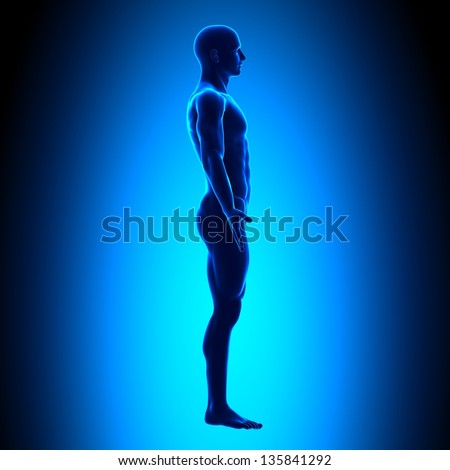 Full Body - Side View - Blue concept - stock photo