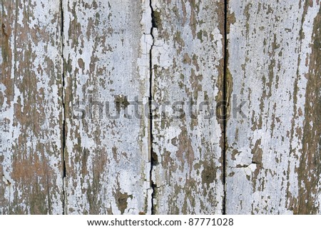 full frame abstract detail of a rundown wooden facade with flaking paint and fissures