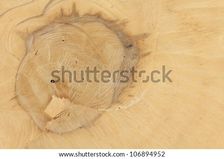 Full frame of Lumber, texture background. - stock photo