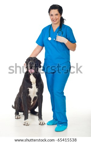 Full length of smiling veterinary woman with a great dane dog - stock photo