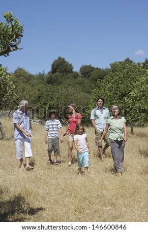 Full length of three generation family walking in the field - stock photo