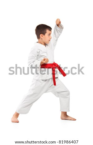Full length portrait of a karate kid posing isolated against white background - stock photo
