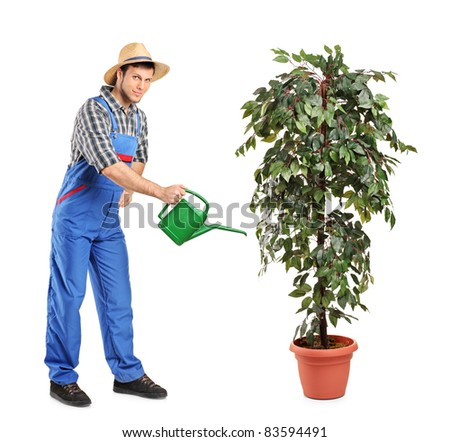 Full length portrait of a person watering a decoration plant isolated on white background - stock photo