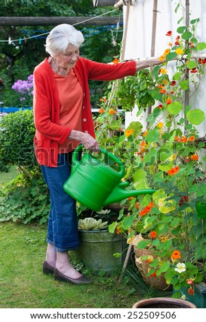 Full Length Shot of Serious Old Woman Watering Flower Plants at the House Garden. - stock photo