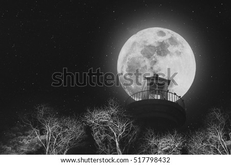 Full moon at night with lighthouse on clear sky with stars, and dead branches, black and white images