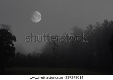Full Moon in the Mist - stock photo