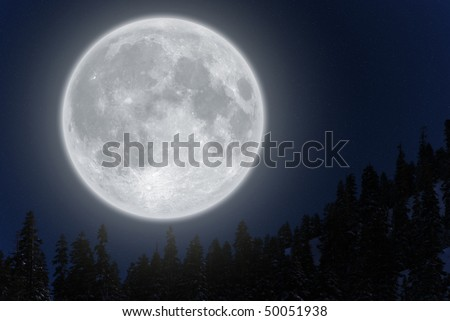 Full moon rising above conifer trees against clear sky.