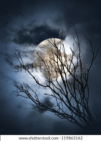 Full moon shining through the clouds and branches