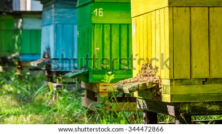 Full of honey beehives in garden - stock photo