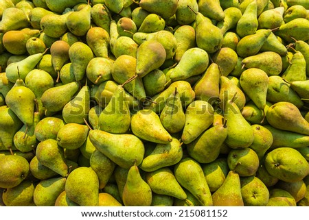 Fullscreen picture of just picked Conference pears in a heap waiting for transportation. - stock photo