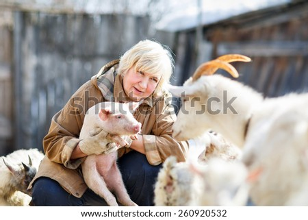 Fun adult woman holding a small pig on the farm - stock photo