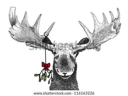 fun Christmas tradition of kiss under mistletoe, funny humorous Christmas card sketch of big smiling moose waiting for smooch, hand drawn holiday illustration, Christmas image decoration winter scene - stock photo
