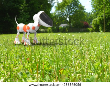 Fun dog - stock photo