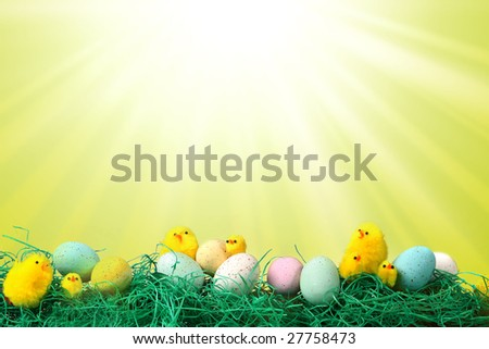 Fun Easter Holiday Image With Chicks Eggs and Grass Against Starburst Pattern Background