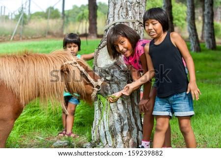 Fun portrait of native American girls feeding horse on farm. - stock photo