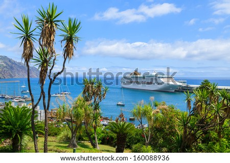 FUNCHAL PORT, PORTUGAL - AUGUST 24: cruise ship anchored off the coast of Madeira island on August 24, 2013 in Funchal harbour seen from city park with palm trees in foreground. - stock photo