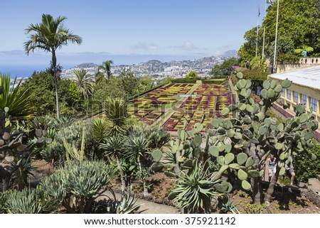 FUNCHAL, PORTUGAL - JUNE 25: Famous Tropical Botanical Gardens on June 25, 2015 in Funchal, Madeira island, Portugal.
