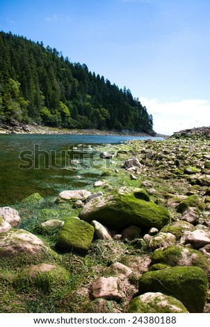 Fundy Trail St. Martins, New Brunswick, Canada, rocky beach on low tide, green algae rocks beside blue green river leading into distance with tree covered hill in background and blue sky. - stock photo