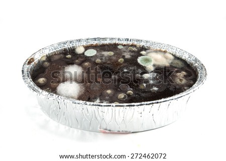 Fungus on the top of chocolate cake with foil  - stock photo
