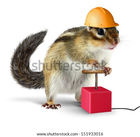 Funny chipmunk with detonator isolated on white background - stock photo