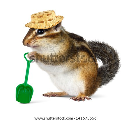 Funny chipmunk with straw hat and shovel, farmer concept - stock photo