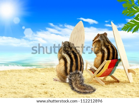 Funny chipmunks surfers on the beach with surf boards - stock photo