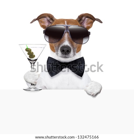 funny cocktail dog behind a white banner - stock photo
