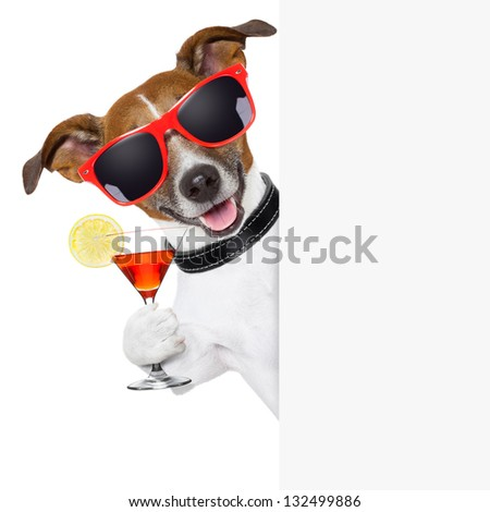 funny cocktail dog holding a martini glass behind a banner - stock photo