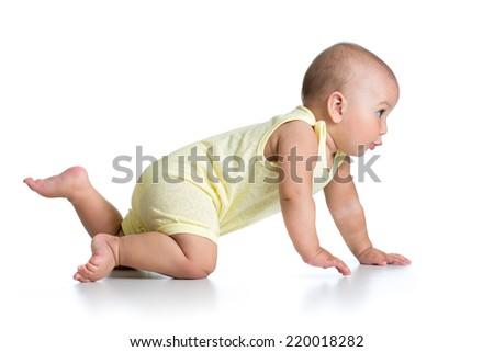 funny crawling baby isolated on white background - stock photo
